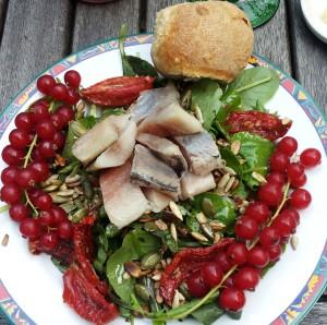 Salade met dressing, zaden, haring, zongedroogde tomaat en rode bessen